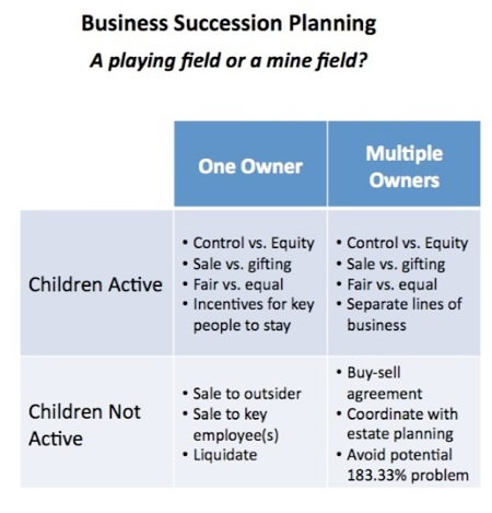 business process transition plan template - business succession planning nationalbvs